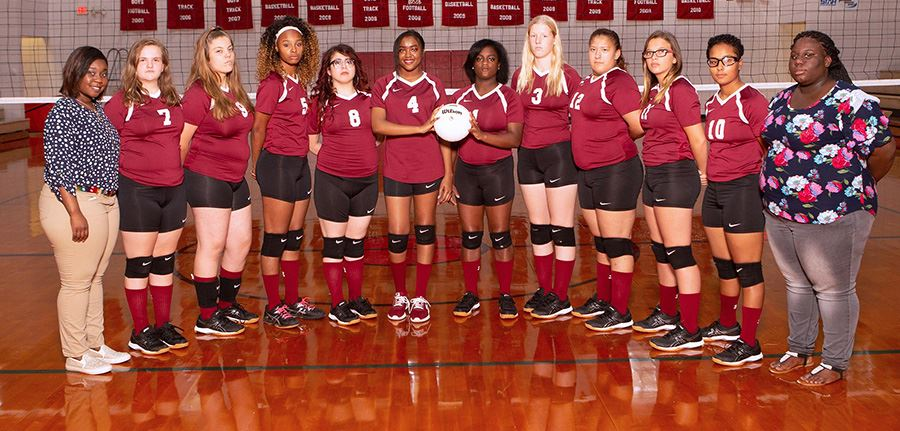 Members of the 2018-19 ASD varsity volleyball team stand side by side in the gym in team photo.
