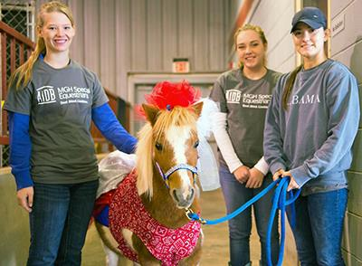 Three female volunteers smile as they display an MGHSE pony wearing red, white and blue for Veteran's Day