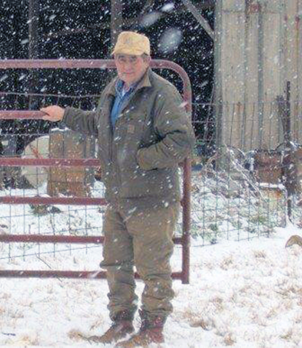 A man standing by a gate next to a barn. There is a light snow droping down.